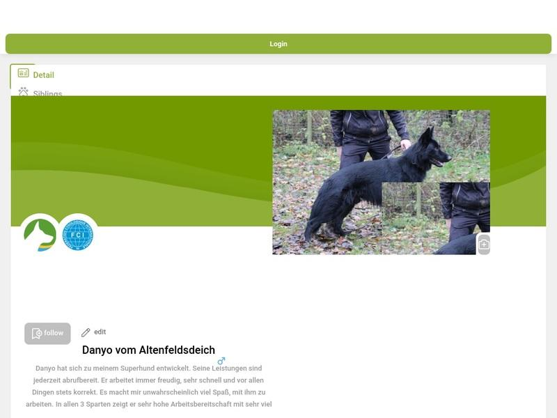 Screenshot von www.working-dog.com/dogs-details/3006575/Danyo-vom-Altenfeldsdeich